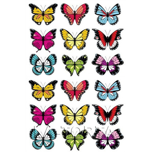 Бабочки цветные  14х20