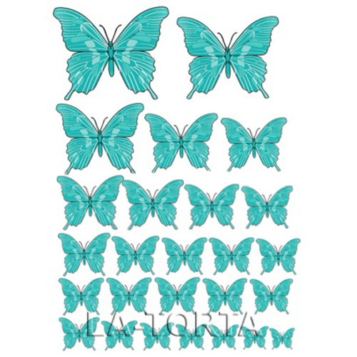 Бабочки бирюзовые  20х29