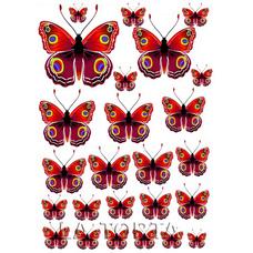 Бабочки красные  20х29