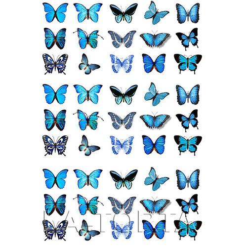 Бабочки сине-голубые 20х29