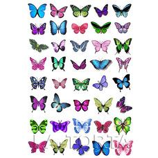 Бабочки ассорти  20х29